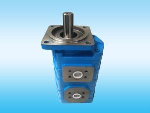 Duplex Gear Oil Pump
